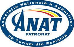 anat-1344627328